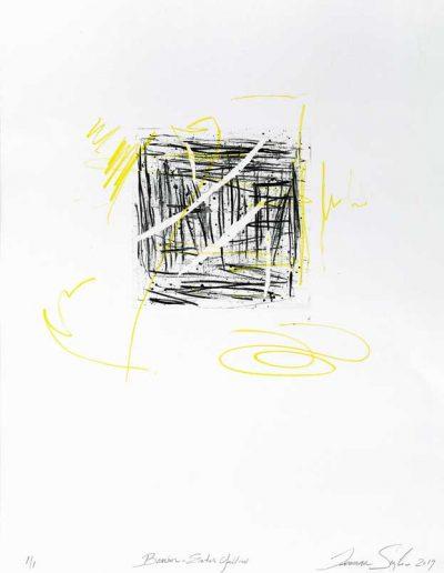 Barrier - Enter Yellow